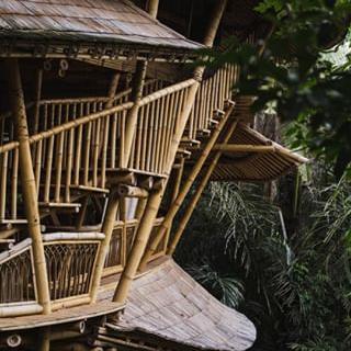 Bamboo U - Build And Design Courses